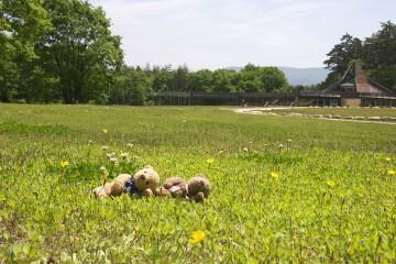 大町・松川地区 大草原の家