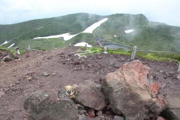 男女岳山頂