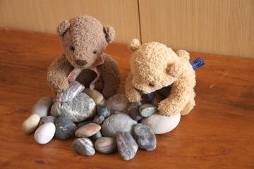 ヒスイ海岸で集めた石