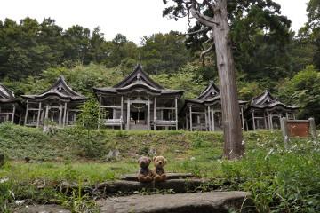 赤神神社五社堂