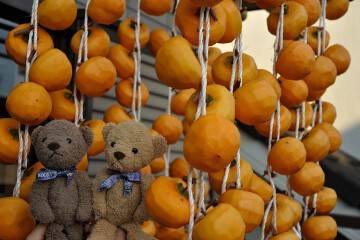 柿のカーテン