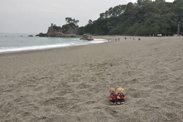 龍王岬と桂浜