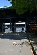 大成殿と杏壇門