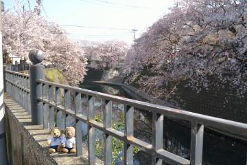 大岡川プロムナード