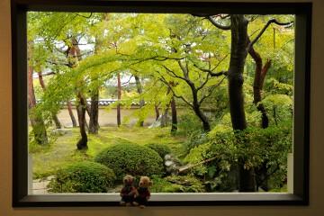 寿立庵の庭