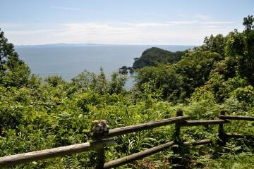 奥松島の海