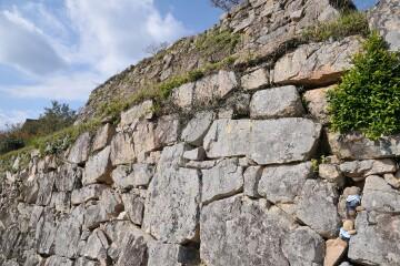 大手口の石垣を登る
