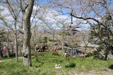 安達ヶ原公園