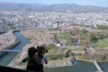 五稜郭タワー展望台